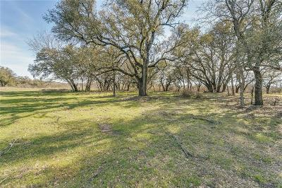 Aledo Farm & Ranch For Sale: Tbd-1 Bear Creek Road