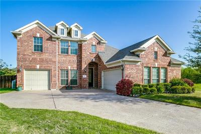 Fort Worth Single Family Home For Sale: 4401 Cirrus Lane