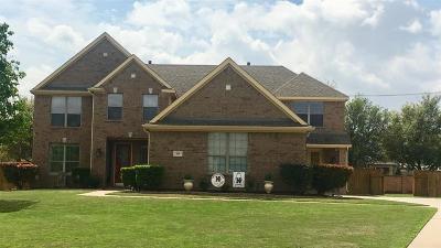 Keller Single Family Home For Sale: 536 Unbridled Lane