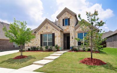Allen Single Family Home For Sale: 965 Beverly Lane
