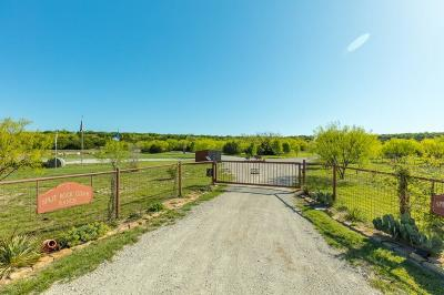 Palo Pinto Farm & Ranch For Sale: 1845 S Fm Road 4