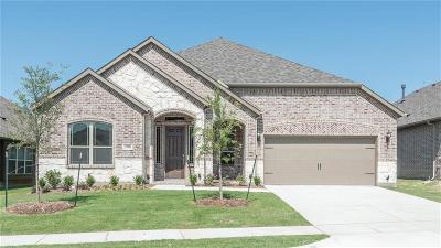 Anna Single Family Home For Sale: 2506 Thayne Drive