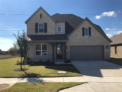 Flower Mound Single Family Home For Sale: 6251 Whiskerbrush Road
