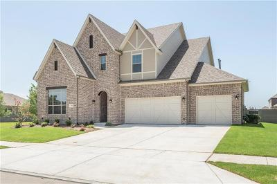 Little Elm Single Family Home For Sale: 736 Dusty Trail