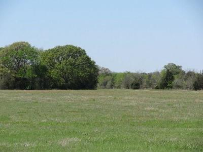 Wills Point Residential Lots & Land For Sale: Lot 5 Vz Cr 3815