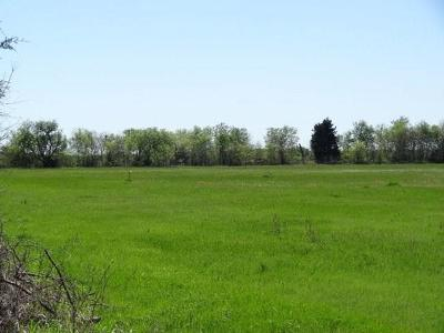 Wills Point Residential Lots & Land For Sale: Lot 9 Vz Cr 3815