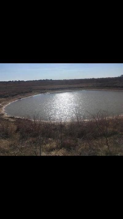Rising Star TX Farm & Ranch For Sale: $225,000