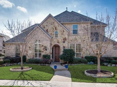 Allen Single Family Home For Sale: 1803 Trinidad Lane