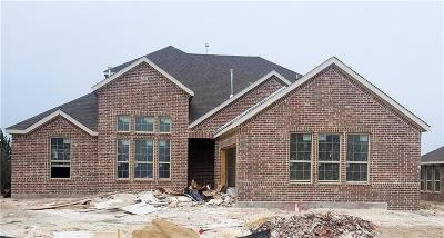 Rockwall Single Family Home For Sale: 3909 Whitman Drive