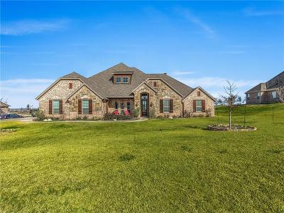 Aledo Single Family Home For Sale: 256 Bearclaw Circle