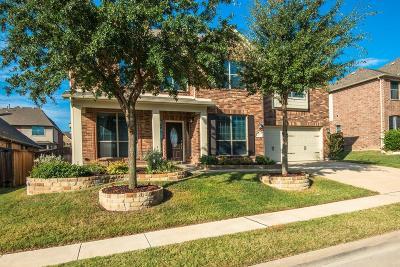 Roanoke Single Family Home Active Option Contract: 439 Brighton Street