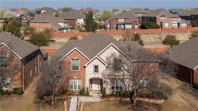 Irving Single Family Home For Sale: 1219 Willowdale Lane
