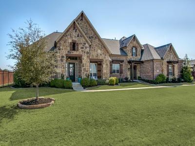 Prosper Single Family Home For Sale: 2520 Greenspoint