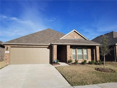 Frisco Single Family Home For Sale: 3921 Blessington Drive
