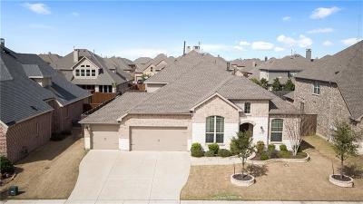 Frisco Single Family Home For Sale: 614 Sleepy Creek Drive