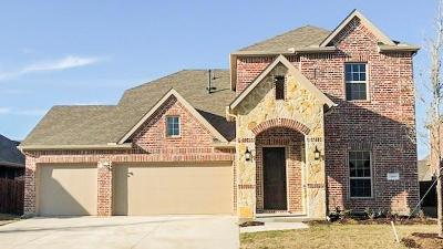McKinney Single Family Home For Sale: 10800 Smithville Place