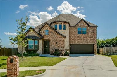 Denton Single Family Home For Sale: 6025 Eagle Mountain Drive