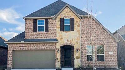 McKinney Single Family Home For Sale: 10505 Fort Davis Place