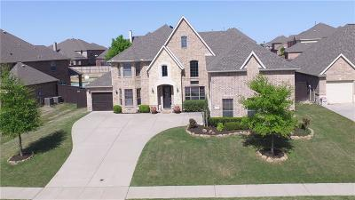Single Family Home For Sale: 741 Arrowhead Drive