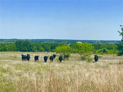 Lipan Farm & Ranch For Sale: County Road 146