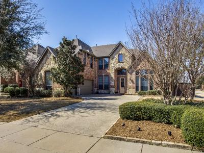 Allen Single Family Home For Sale: 1509 Winterbrook Court