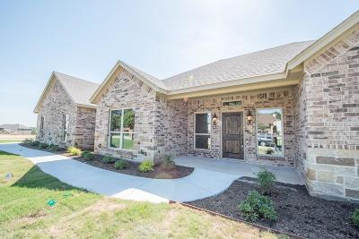Weatherford Single Family Home For Sale: 119 Holmes Lane