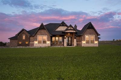 Granbury Single Family Home For Sale: 208 Martin Drive