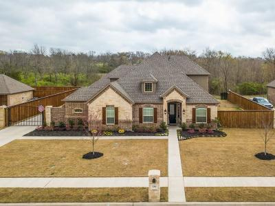 Waxahachie Single Family Home For Sale: 236 Katy Lake Drive
