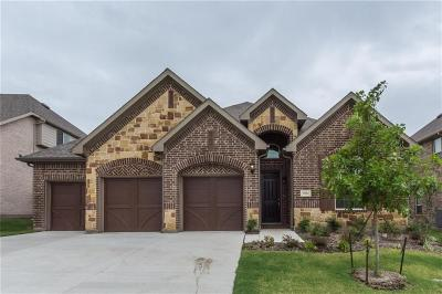 Aledo Single Family Home For Sale: 15004 Stargazer Dr.
