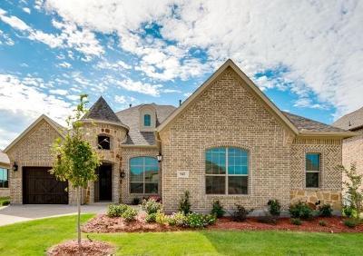 Prosper Single Family Home For Sale: 861 Allen Street