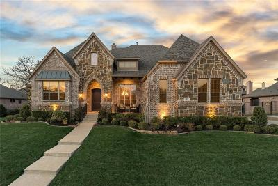 Tarrant County Single Family Home For Sale: 919 Cobblestone Parks Drive