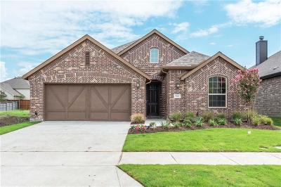 Little Elm Single Family Home For Sale: 5120 Shallow Pond Drive