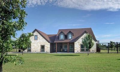 Mineral Wells Single Family Home For Sale: 1438 Kite Road