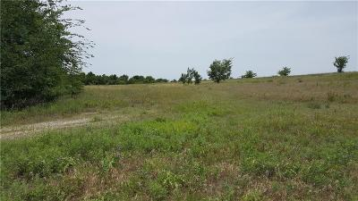 Decatur Farm & Ranch For Sale: 287 Highway