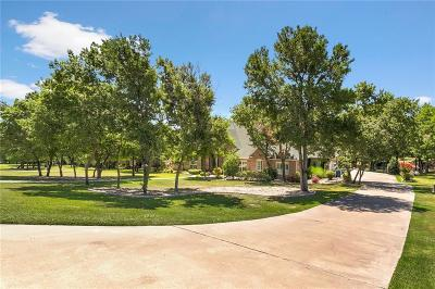 Parker County Single Family Home For Sale: 384 Creek Bend Drive