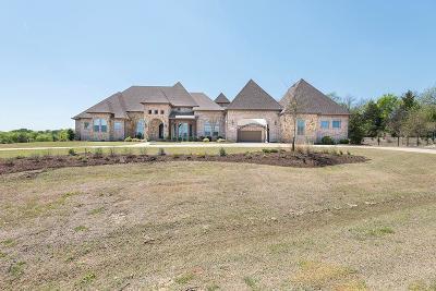 Fairview Single Family Home For Sale: 1001 Remington Court