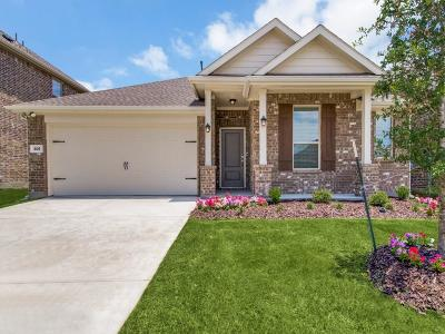 Collin County Single Family Home For Sale: 409 Waterton Drive