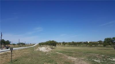 Aledo Residential Lots & Land For Sale: 145 Maravilla Drive