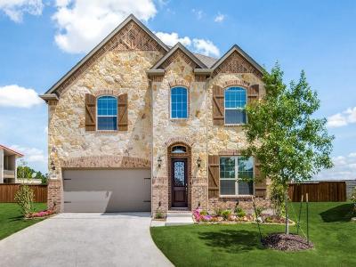 Irving Single Family Home For Sale: 4211 Prado Court