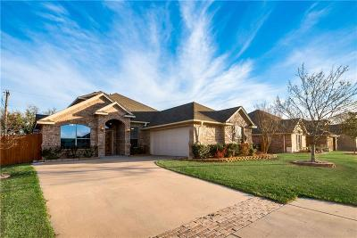 Weatherford Single Family Home For Sale: 392 Lockwood Lane