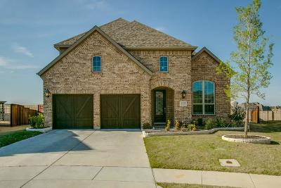 Irving Single Family Home For Sale: 3335 Denali Drive