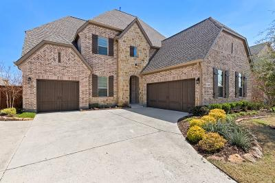 Frisco Single Family Home Active Option Contract: 6482 Eden Valley Drive