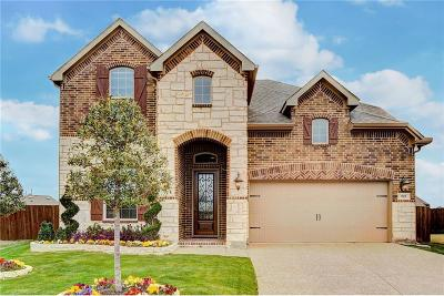 Lewisville Single Family Home For Sale: 321 Wyndale Court