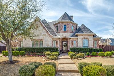 Allen Single Family Home For Sale: 2265 Broad Brook Lane