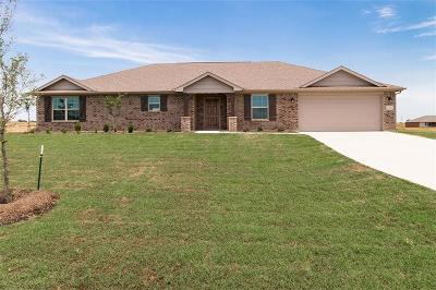 Springtown Single Family Home For Sale: 220 Springwood Ranch Loop