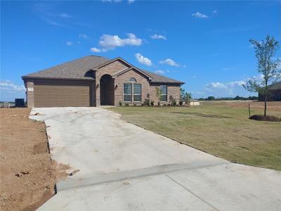 Springtown Single Family Home For Sale: 166 Springwood Ranch Loop