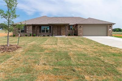 Springtown Single Family Home For Sale: 212 Springwood Ranch Loop