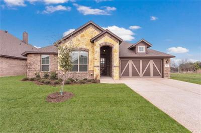 Benbrook Single Family Home For Sale: 6713 Canyon Rock Drive