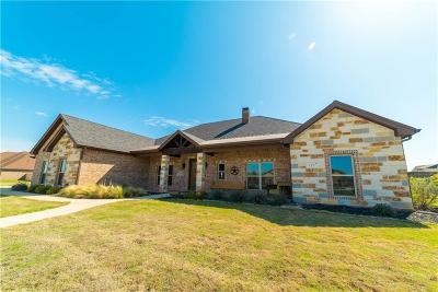 Abilene Single Family Home For Sale: 117 Cactus Rose Trail