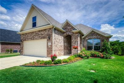 Fort Worth Single Family Home For Sale: 9653 Rio Frio Trail